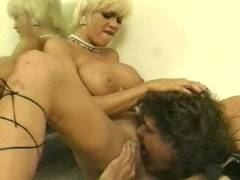 Busty Porno Stars
