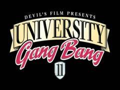 University Gang Hammer 12