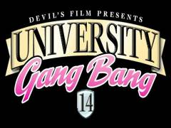 University Gang Screw 14
