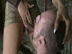 TS Seduction: The First Ever TS Gang Hammer On TS Seduction – The Gangster Gangbang